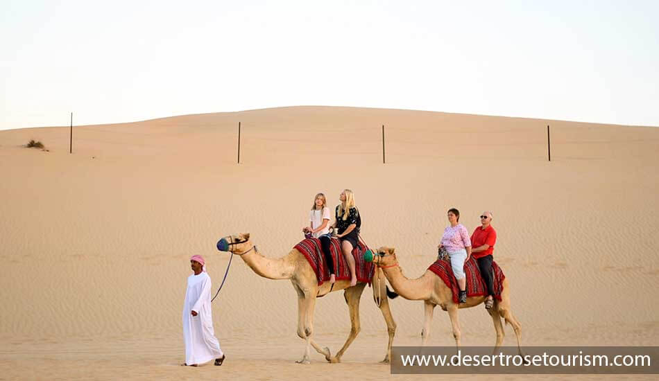 Image result for desert safari